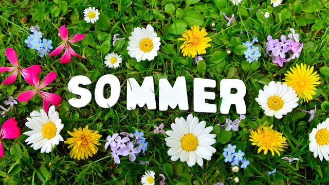 Res 640 360 sommer